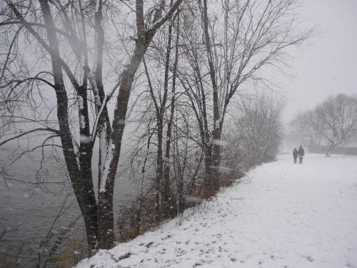 Sudden_snow