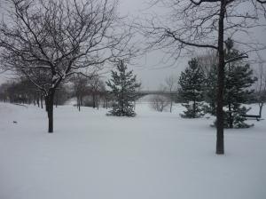 30-Sous la neige