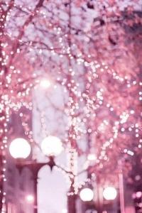 6- Lumière rose
