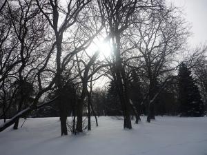 8- Soleil blanc